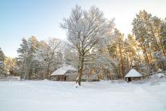 Традиционные дома в лесе Стоковые Фото