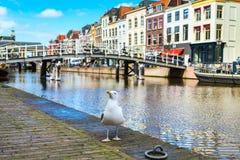 Традиционные дома и моста центр города внутри Лейдена, Нидерландов Стоковые Изображения