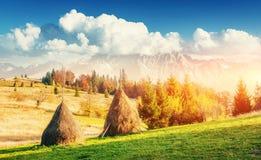 Традиционные стога сена, типичное сельское место прикарпатско Украина Стоковое Изображение