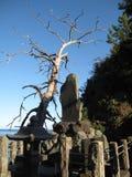 Традиционные японские окрестности сельской местности виска с каменной статуей Стоковое Изображение