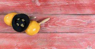 Традиционные maracas и sombrero для знаменитости праздника Cinco de Mayo Стоковая Фотография
