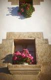 Традиционный домашний фасад с окнами и розовыми цветками Наварра, Стоковое Изображение RF