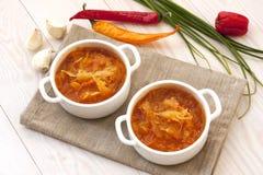 Традиционный русский кислый суп капусты Стоковое фото RF