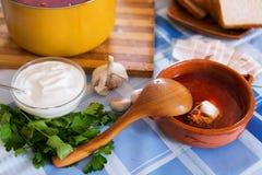 Традиционный украинский горячий борщ супа Стоковые Изображения RF