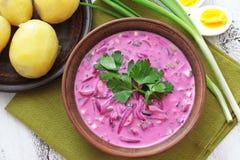 Холодный суп свеклы Стоковая Фотография RF