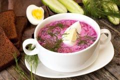 Традиционный холодный суп свеклы с овощами Стоковые Изображения