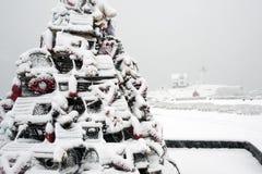 Традиция дерева праздника ловушки омара уникально Стоковые Фото