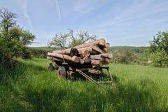 Трейлер с стволами дерева на луге Стоковое Изображение RF