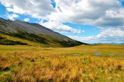 Трек к гуанако Cerro в Огненной Земле Стоковая Фотография RF