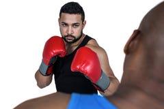 Тренер бокса с его бойцом Стоковая Фотография
