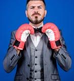 Тренер дела бизнесмен в официальных костюме и бабочке бородатый человек в пробивать перчаток бокса Дело и спорт стоковая фотография