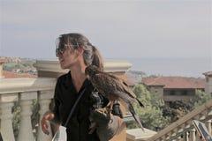 Тренер женщины любимца ястреба Херрис стоковая фотография rf
