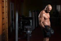 Тренировка бицепса с гантелями в спортзале Стоковое Изображение