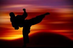 Тренировка боевых искусств Стоковые Изображения RF
