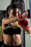 тренировка боксера Стоковые Фото