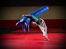 Тренировка борца Стоковая Фотография RF