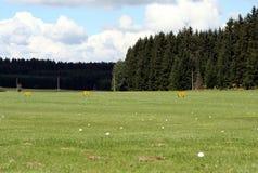 тренировка гольфа Стоковая Фотография