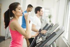Тренировка женщины в спортзале Стоковая Фотография