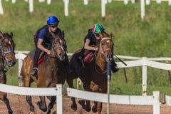 Тренировка жокеев лошадей гонки Стоковые Фотографии RF