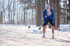 Тренировка зимы в снежной природе Стоковые Изображения