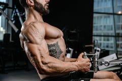 Тренировка диеты человека красивой силы атлетическая нагнетая вверх заднюю мышцу Стоковые Изображения RF
