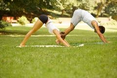 Тренировка йоги Молодые пары размышляя в парке лета Стоковые Фотографии RF