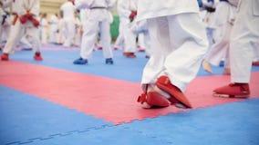 Тренировка карате - группа в составе подростки karateka в кимоно видеоматериал