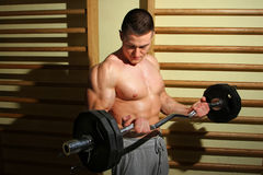 Тренировка культуриста с весами Стоковая Фотография RF
