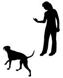 тренировка повиновению собаки Стоковая Фотография RF