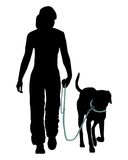 тренировка повиновению собаки Стоковые Фото