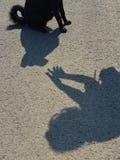 Тренировка собаки - тени женщины и собаки Стоковая Фотография RF