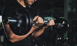 Тренировка со штангой, атлетическим без рубашки молодым человеком спорт - моделью фитнеса со штангой в спортзале, красивом тяжело стоковые фото