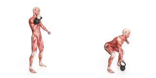 Тренировка Kettlebell Стоковые Фотографии RF