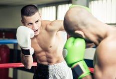 Тренировка Kickboxers на кольце стоковые изображения rf