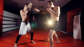 Тренировка ` s боксера, пробивая спарринг-партнер на клубе Muttahida Majlis-E-Amal воюя акции видеоматериалы