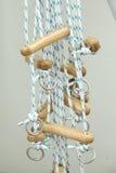 Тренировочный набор физиотерапии веревочки и шкива Стоковое Фото