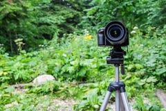 тренога установленная камерой Стоковые Фото