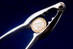 треская евро Стоковое Фото