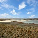 треская земля Стоковая Фотография