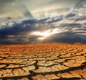 треская сухая земля стоковые фотографии rf