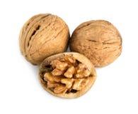 треснутая белизна грецкого ореха стоковое изображение