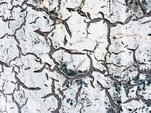 треснутая белизна стены стоковая фотография rf