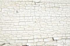 Треснутая белая текстура краски на старой древесине Стоковое Изображение RF