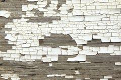Треснутая белая текстура краски на старой древесине Стоковые Фотографии RF