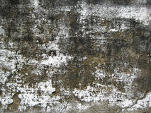 Треснутая белизна покрасила стену подверганный действию к под открытым небом текстуре форм Стоковое Изображение