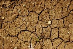 треснутая высушенная почва Стоковое Изображение