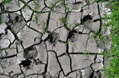 Треснутая грязь с травой Стоковая Фотография RF
