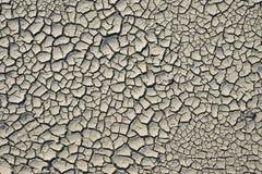 Треснутая грязь Стоковое фото RF