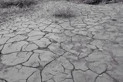 треснутая грязь Стоковые Фотографии RF