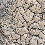 треснутая грязь стоковое изображение rf